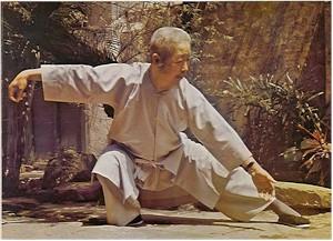 Maestro Zheng Man Ching