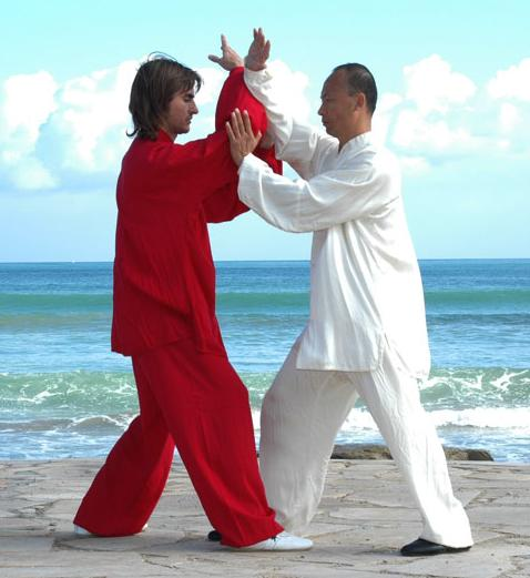 Tui Shou, interacción dinámica entre Yin y Yang.